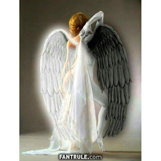 Imágenes de Ángeles y demonios alas blancas y negras mujer