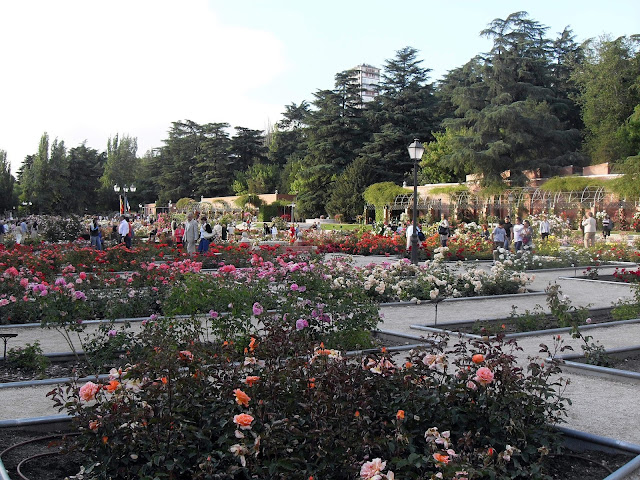 visita a la Rosaleda de Madrid