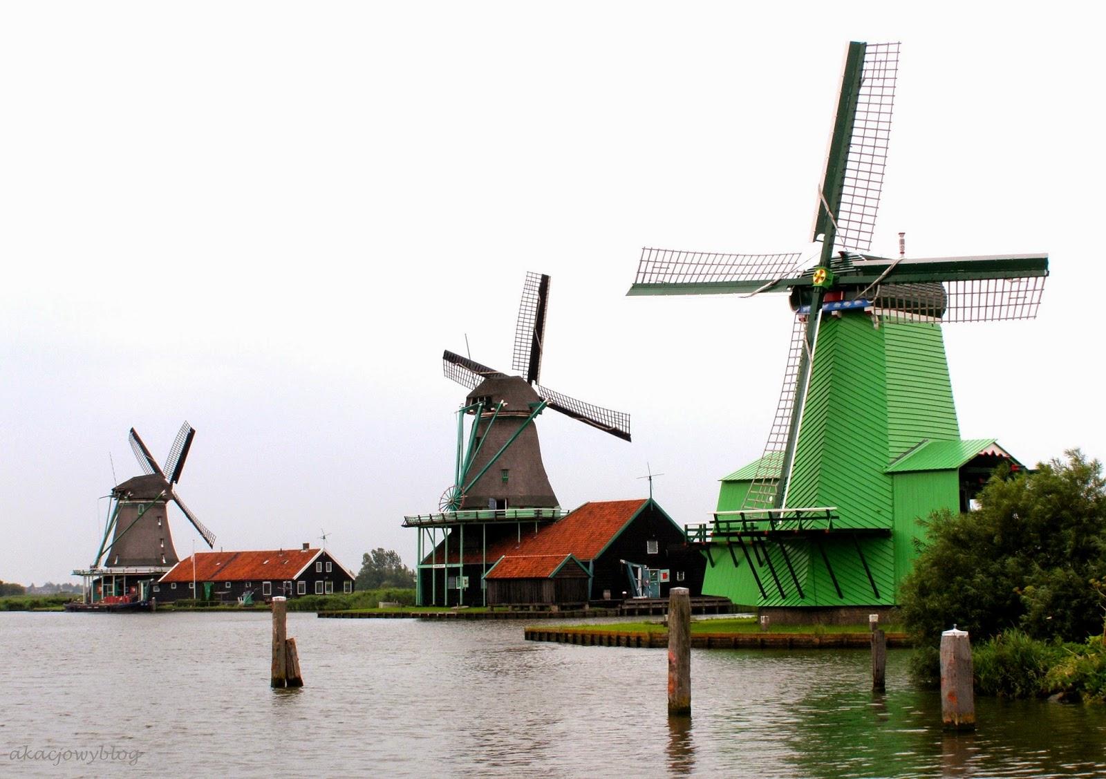 Holandia - skansen Zaanse Schans.