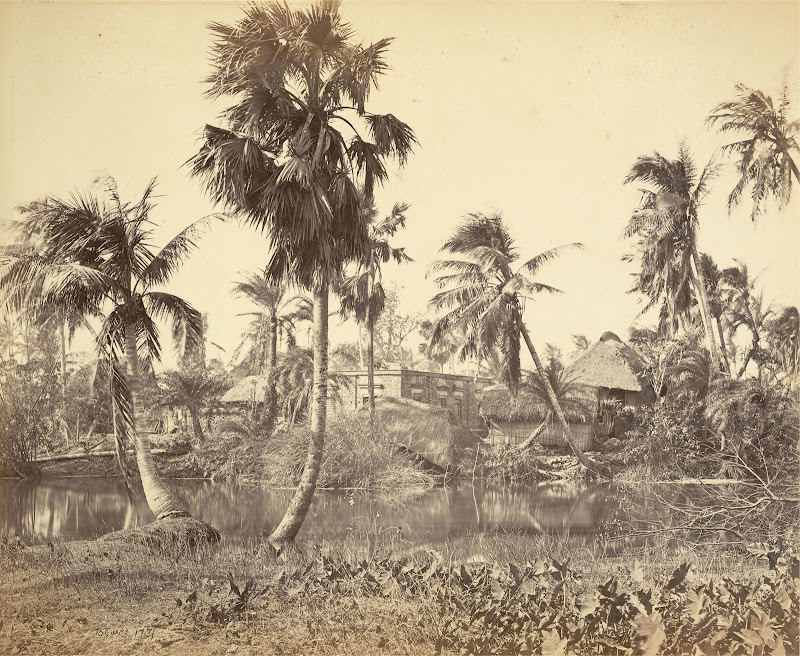 Rustic Village Scene in Bengal - 1865