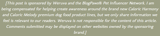 [This post is sponsored by Weruva and the BlogPaws® Pet Influencer Network. I am being compensated for helping create awareness around the brand new Caloric Harmony and Caloric Melody premium dog food product lines, but we only share information we feel is relevant to our readers. Weruva is not responsible for the content of this article. Comments submitted may be displayed on other websites owned by the sponsoring brand.]