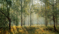 bisnis perkebunan, usaha perkebunan, peluang usaha perkebunan, kebun sengon, kayu sengon, pohon sengon, sengon