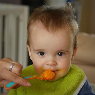 Makanan Untuk Bayi Usia 10 Bulan