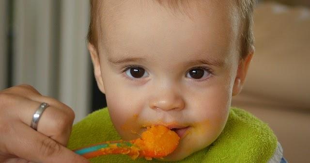10 Resep MPASI untuk Bayi 8 Bulan