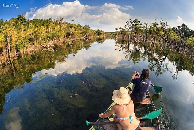 Floresta Nacional de Tapajós (FLONA)