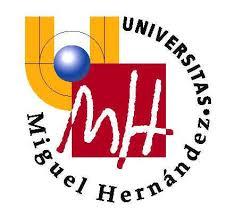 Titulaciones: Universidad Miguel Hernández de Elche