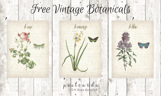 3 free printable botanicals