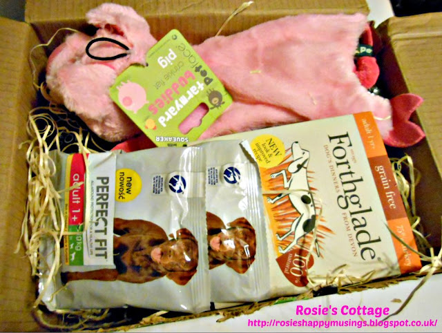 Amazon Pet Supplies Sample Box: A fabulous box of products for dogs - contents.