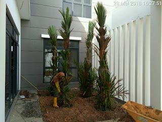 Lowongan Kerja Malaysia Kebun Bunga Landcape