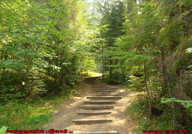 Oregon Watson Falls Trailhead