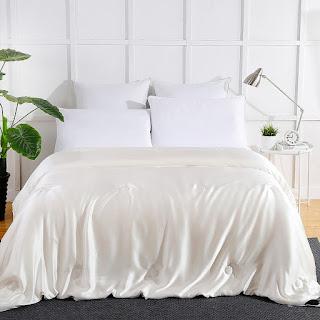 Summer Silk Covered Silk Comforter
