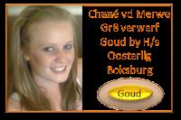 Chané vd Merwe, Gr.8 Hoërskool Oosterlig Boksburg verwerf Goud 86% op 16 Maart 2013 met die tema TAAL