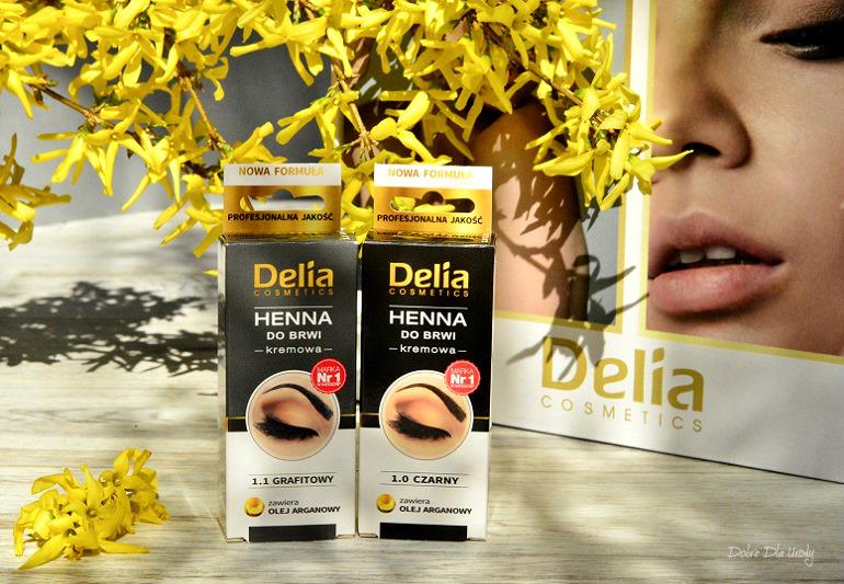 Delia Henna do brwi kremowa z olejem Arganowym