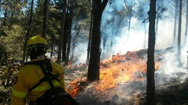Alerta máxima en Gran Canaria e islas occidentales Incendio Forestal, 5 agosto