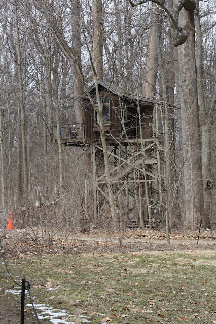 Treehouses at Longwood Gardens give kids a place to climb and also a different vantage point