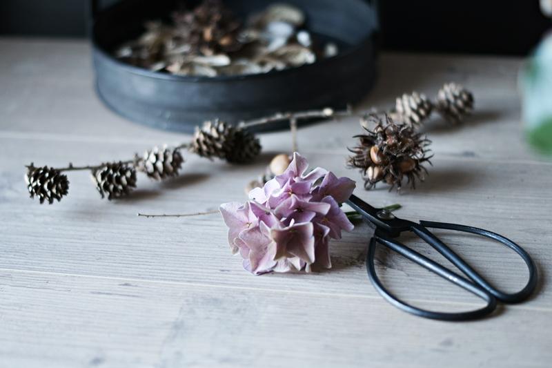 Blog + Fotografie by it's me! - Hortensienblüte, eine alte Schere und ein Lärchenzweig