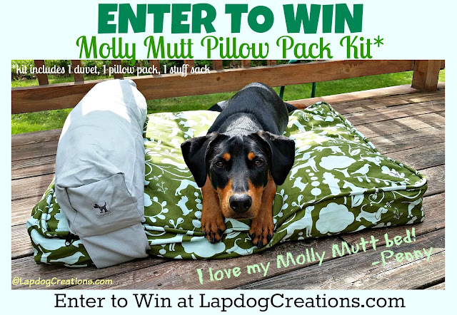 Penny LOVES her #MollyMutt #dogbed so much and thinks your dog will love one too! Enter to WIN a Pillow Pack Kit today! #review #petgiveaway #happypuppy #rescuedog #upcycle #DobermanPuppy #LapdogCreations ©LapdogCreations