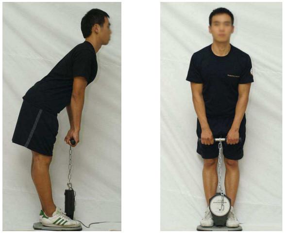 배근력 측정 Mengukur kekuatan punggung