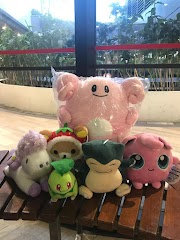 Couple Finance II - How to survive your claw machine addiction?