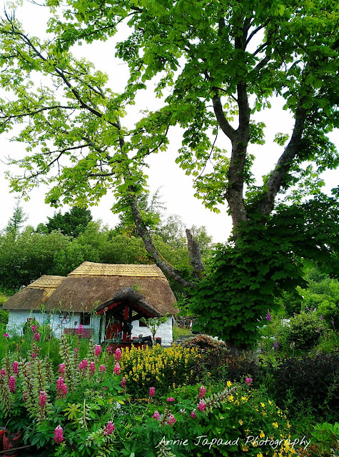 image with a thatched cottage and a beautiful garden