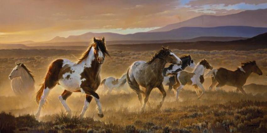 Imágenes Arte Pinturas: Animales Salvajes Cuadros De