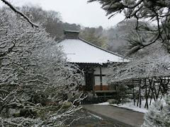 雪の光則寺