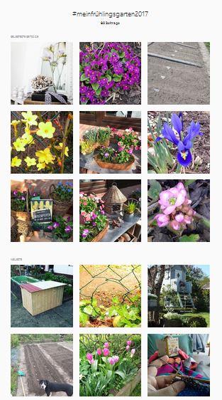https://www.instagram.com/explore/tags/meinfr%C3%BChlingsgarten2017/