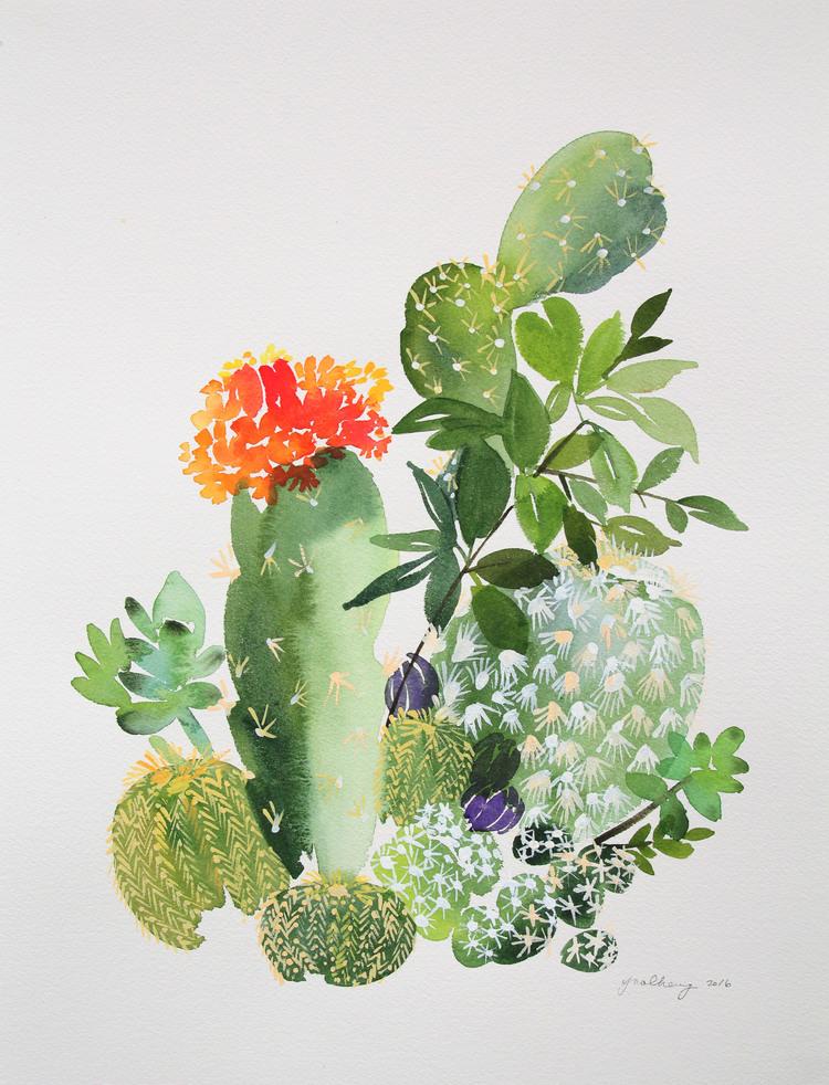Los Cactus Como Punto Focal C Sas De Pel Cula