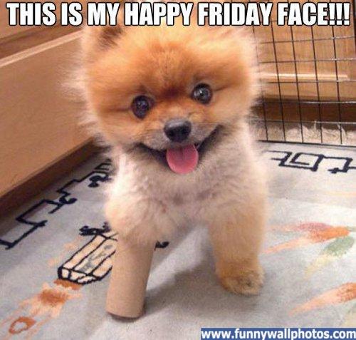 I M So Happy Its Friday: Dear Friday