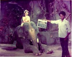 Malayalam movie Angathattu Images - Actress vijayasree