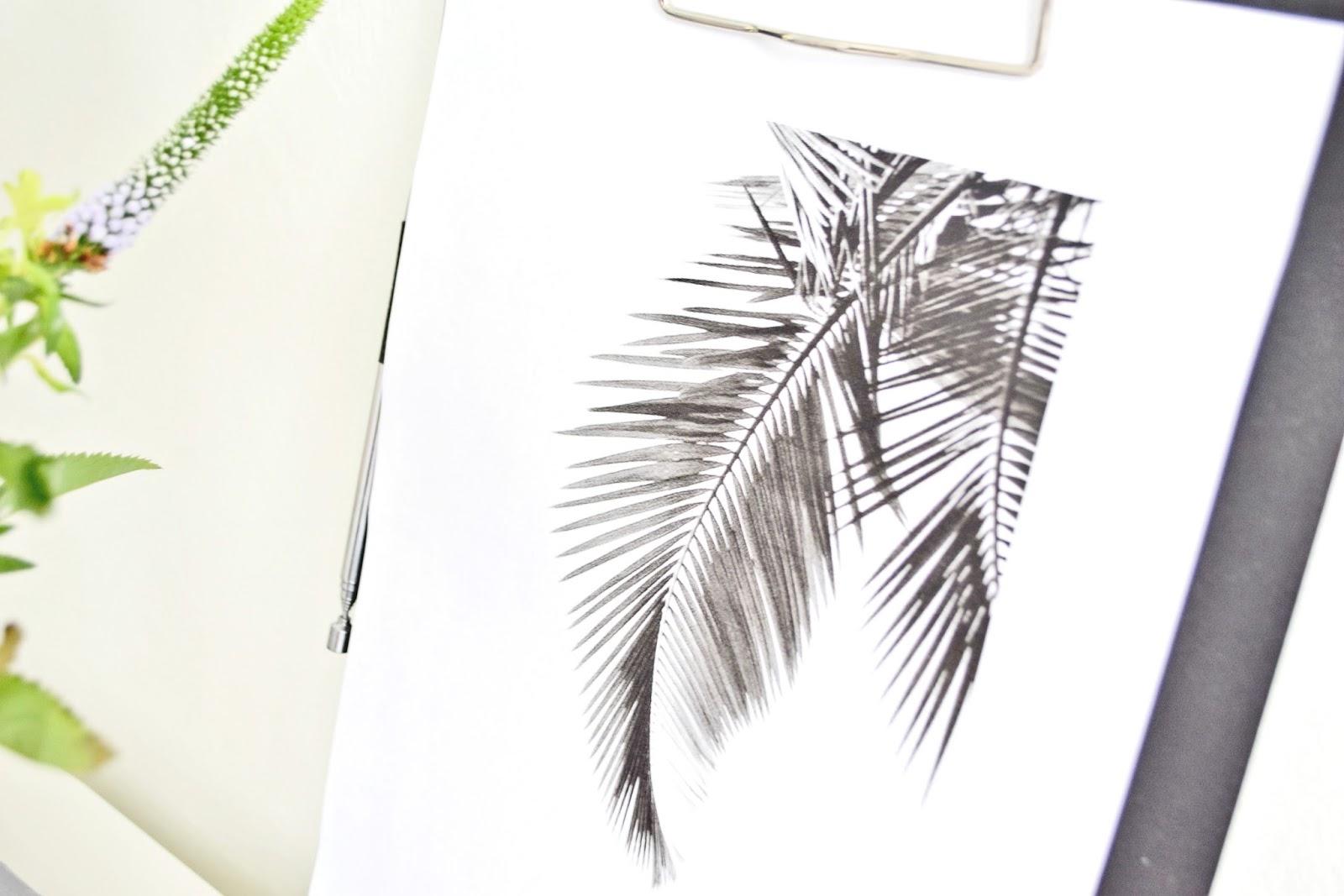 dekoracje tropikalna palma