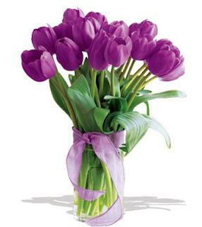 Rangkaian Bunga Tulip