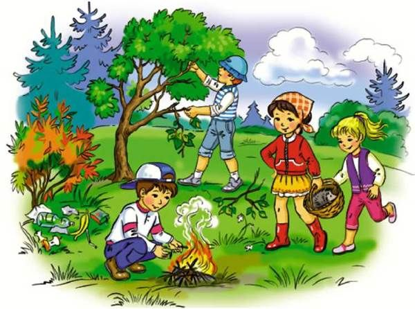 Картинки на тему лес живи