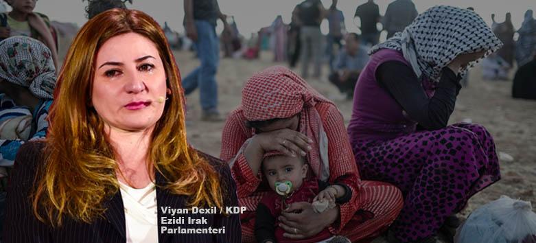 Ezidi Milletvekili KDP Viyan Dahil Dexil Ezidiler Rakka DSG QSD YPG