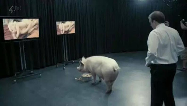 Black Mirror - Mejor Miniserie - Premios Mini-Fu