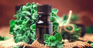 4 Amazing Health Benefits of Oregano Oil for Flu