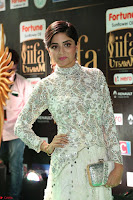 Poonam Kaur in Beautiful Floor Length Gown at IIFA Utsavam Awards 2017  Day 2  Exclusive 13.JPG