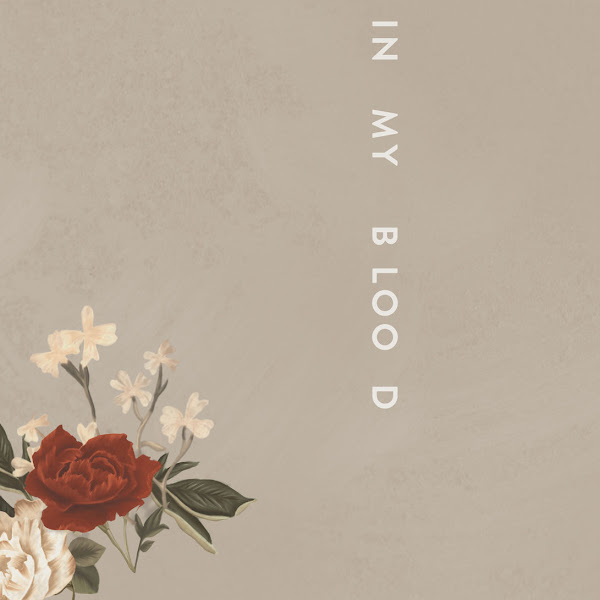 Shawn Mendes - In My Blood - Single Cover