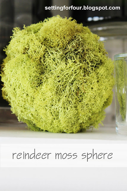 Make these quick and easy DIY Reindeer Moss Spheres for home decor accents! See the tutorial! Add them to a mantel, a bowl or apothecary jar for a pretty pop of green color! Nice for spring decor too.