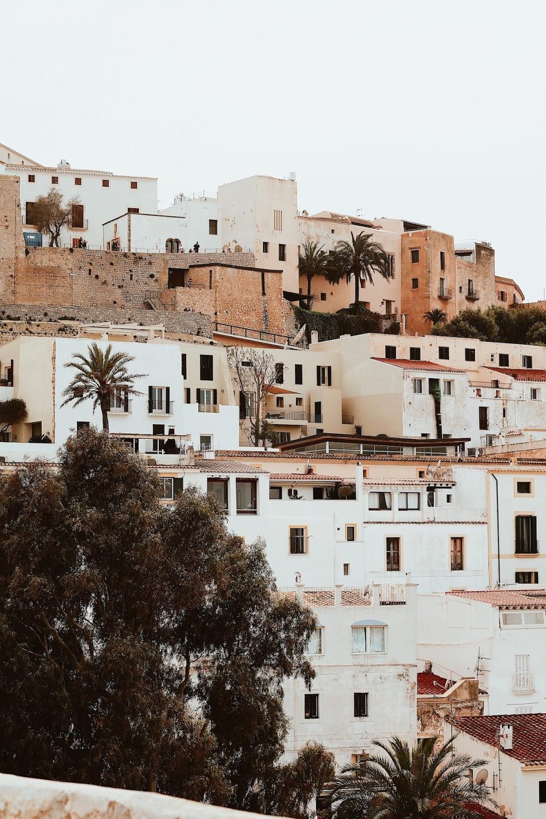Ibiza natura