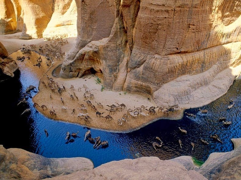 Guleta d'Archei - Sahara Desert
