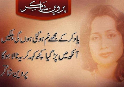 urdu sufi poetry