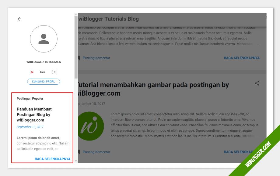 tampilan widget pada blog