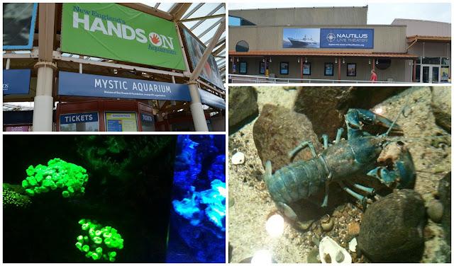Family Restaurants Near Mystic Aquarium