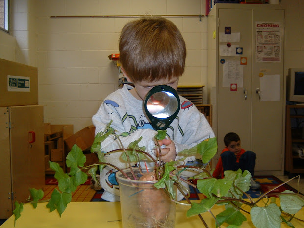 Early Childhood Science Of Discovery