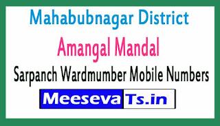 Amangal Mandal Sarpanch Wardmumber Mobile Numbers List Part II Mahabubnagar District in Telangana State