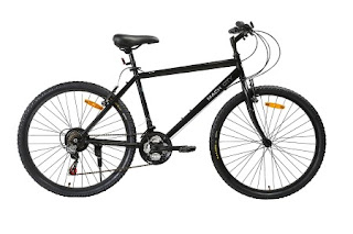 Mach City iBike 21 speed 26