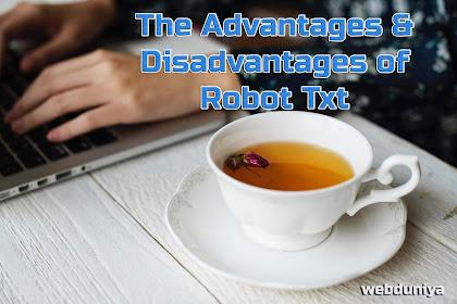 What is The Advantages & Disadvantages of Robot Txt