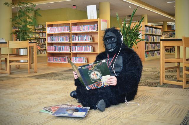 Quanto grande è un pene Gorilla