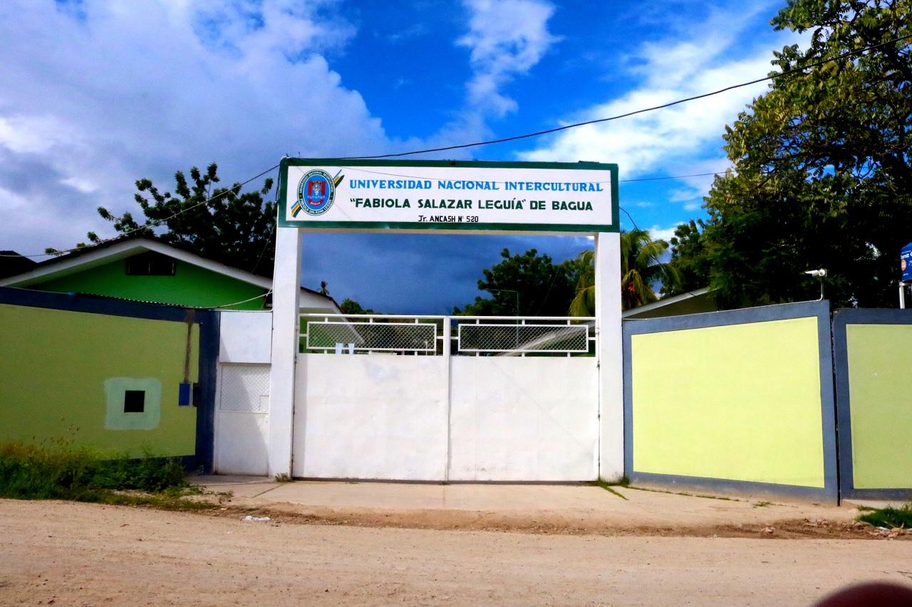 Universidad Nacional Intercultural Fabiola Salazar Leguía de Bagua - UNIFSL